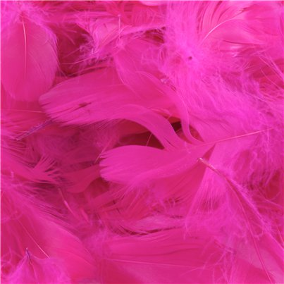 Piume per decorare rosa shocking - 50 gr