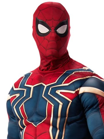 Spider Man Infinity War deluxe - Costume adulto left